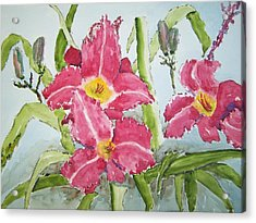 Nine Blooms Acrylic Print by James Cox
