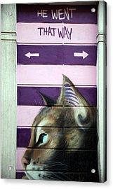 No Dogs Acrylic Print by Jez C Self