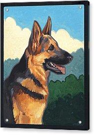 Noble German Shepherd Dog Acrylic Print by Shawn Shea