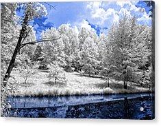 Nobob Pond Ir Acrylic Print by Amber Flowers
