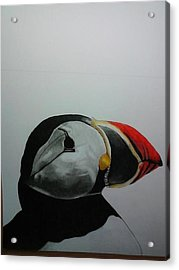 Nordic Birds Acrylic Print by Per-erik Sjogren
