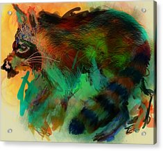 North American Garbage Eater Acrylic Print by James Thomas
