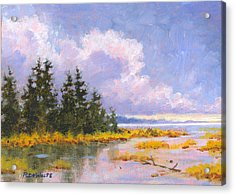 North Shore Acrylic Print by Richard De Wolfe