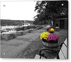 Acrylic Print featuring the photograph Northeast Harbor by Kelly Reber