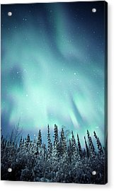 Northern Lights Over Snow Covered Acrylic Print by Robert Postma
