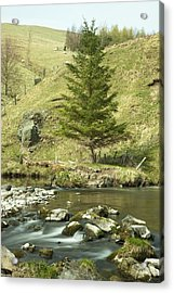 Northumberland, England A River Flowing Acrylic Print by John Short