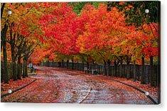 Northwest Autumn Acrylic Print by Ken Stanback