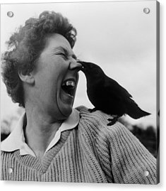 Nose Peck Acrylic Print by Chris Ware