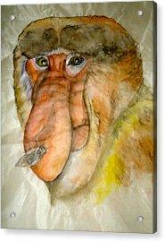 Nose Problem Acrylic Print