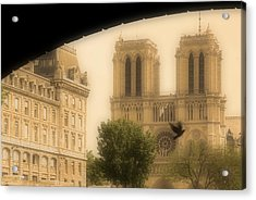 Notre Dame Cathedral Viewed Acrylic Print by John Sylvester