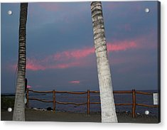 Now I Can See Better Acrylic Print by Raquel Amaral