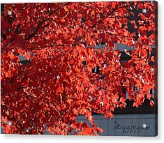 Acrylic Print featuring the digital art Ny Fall by EricaMaxine  Price