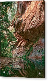 Oak Creek Canyon Walls Acrylic Print by Dave Dilli