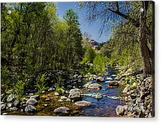 Oak Creek Acrylic Print by Robert Bales