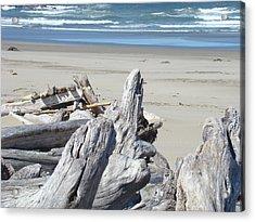Ocean Beach Driftwood Art Prints Coastal Shore Acrylic Print by Baslee Troutman