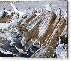 Ocean Driftwood Landscape Art Prints Coastal Views Acrylic Print by Baslee Troutman