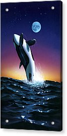 Ocean Leap Acrylic Print by MGL Studio - Chris Hiett