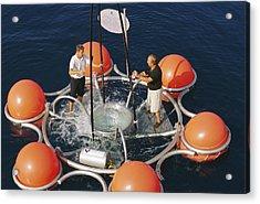 Ocean Technology Acrylic Print by Alexis Rosenfeld