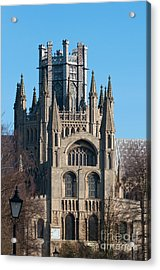 Acrylic Print featuring the photograph Octagon Tower  by Andrew  Michael