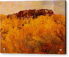 October  Acrylic Print by Ann Powell