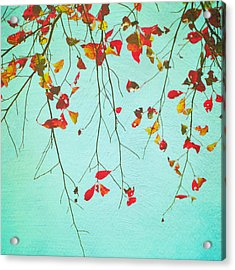 October Greetings Acrylic Print by Sharon Kalstek-Coty