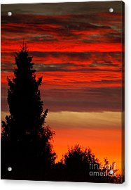 October Sky 4 Acrylic Print