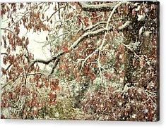 October Snowstorm Acrylic Print by JAMART Photography