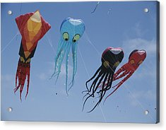 Octopus And Squid-shaped Kites Fly Acrylic Print by Stephen Sharnoff