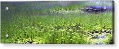 Ode To Monet Acrylic Print by Bob Retnauer