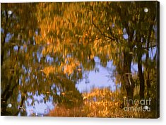 Ode To Monet Acrylic Print by Janeen Wassink Searles