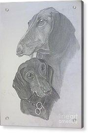 Odi And Eli Acrylic Print by Lora Marsh