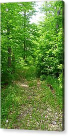 Off The Beaten Path Acrylic Print by Michael Carrothers