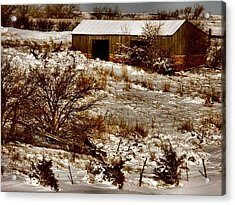 Ohhhh Its Cold Acrylic Print by Lynne and Don Wright