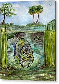 Okeechobee Underwater Acrylic Print by Heather Torres