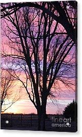 Oklahoma Sunset 1 Acrylic Print