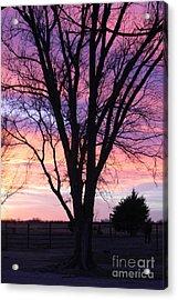 Oklahoma Sunset 2 Acrylic Print