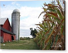 Acrylic Print featuring the photograph Old Barn And Silo by Denise Pohl
