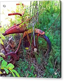 Old Bike And Weeds Acrylic Print