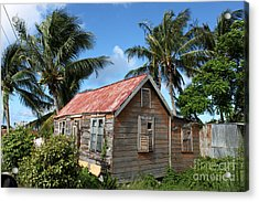 Old Chattel House 2 Acrylic Print by Barbara Marcus