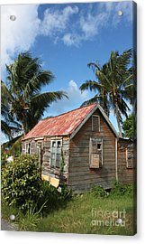 Old Chattel House Acrylic Print by Barbara Marcus
