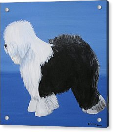 Acrylic Print featuring the painting Old English Sheepdog by Sharon Nummer