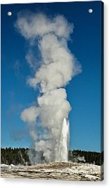 Old Faithful Acrylic Print by Gregory Dyer