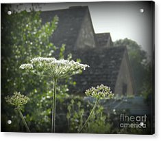 Old Farm House Acrylic Print by Carol  Hynes