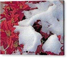 Old-fashioned Christmas 7 - Gardener Village Acrylic Print by Steve Ohlsen
