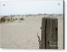 Old Fence Pole Acrylic Print
