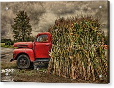 Old Ford Truck Acrylic Print by Pat Abbott
