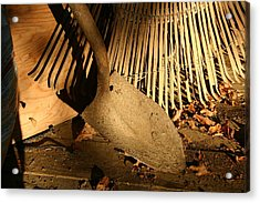 Old Garden Tools In Morning Light Acrylic Print by Stephen St. John