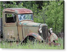 Abandoned Truck In Field Acrylic Print by Athena Mckinzie