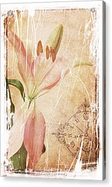Old Greating Card Acrylic Print by Rozalia Toth