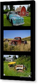 Old Guys 6 Acrylic Print by Idaho Scenic Images Linda Lantzy